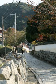 太山寺への道
