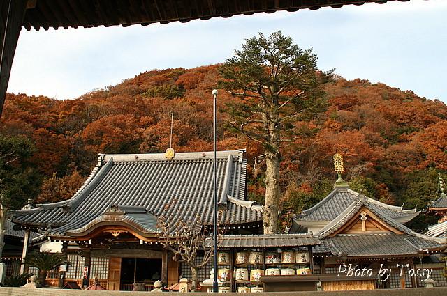 神呪寺本堂