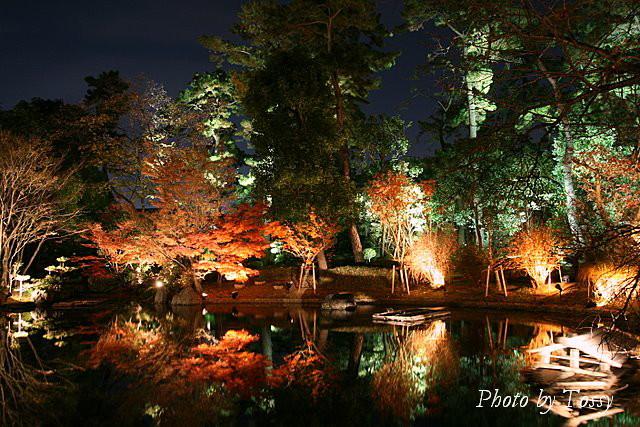 池の端の紅葉
