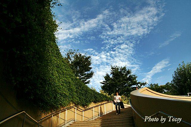 屋上庭園へ