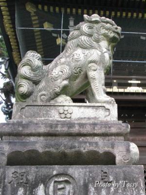 楼門の狛犬