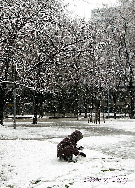 雪を丸める子供