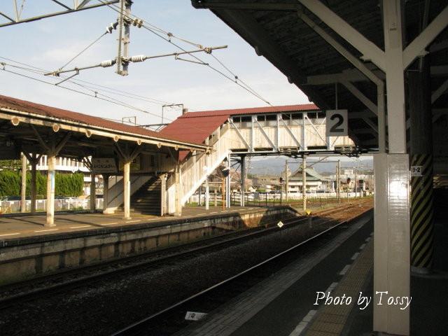 琴平駅 ホーム