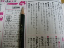 チャレンジ小学国語辞典4