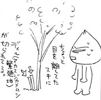 2008-09-02-02.jpg