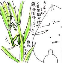 2008-10-09-02.jpg