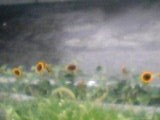 05-08-12_18-54.jpg