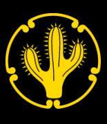 サボテン紋