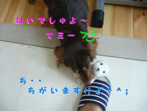 コピー ~ P1090711
