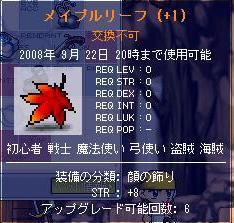 Maple0000010.jpg