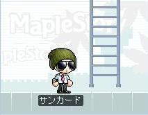 Maple0000016.jpg