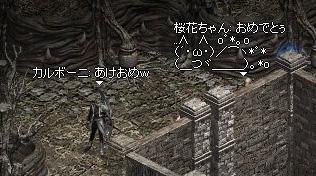 01.02.doshi02.jpg