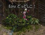 01.03.doshi03.jpg