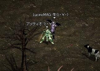 2006.01.23.04.jpg