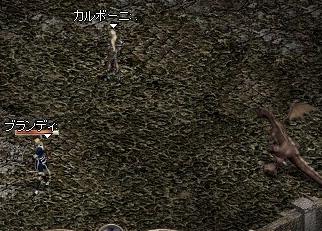 2006.02.09.01.jpg