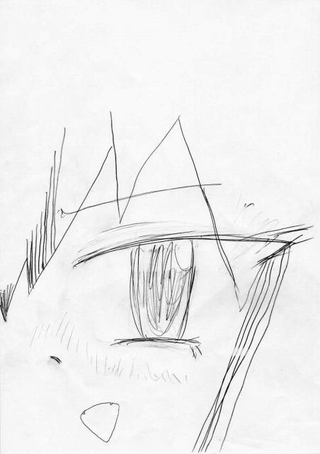 目と鼻と口2