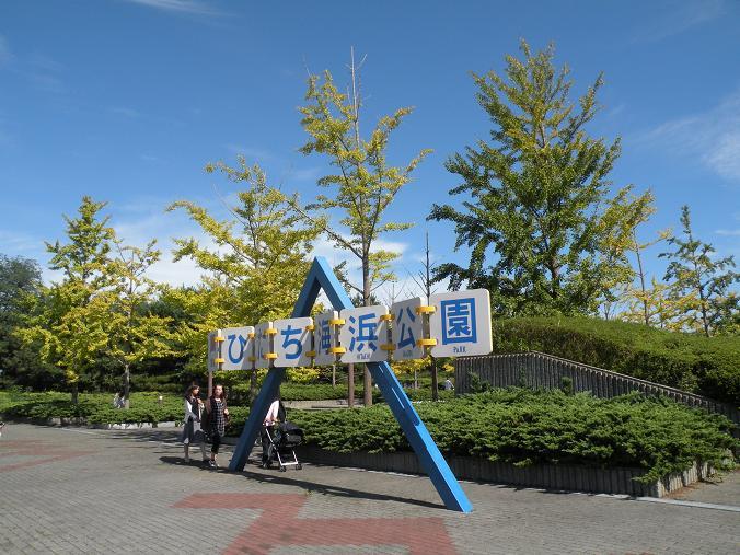 DSCN4267.jpg