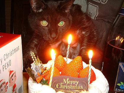 2005年のクリスマスイブ撮影・ドラム