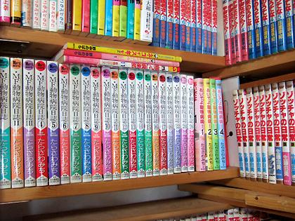 上段・右側の10冊は猫マンガじゃありませんょ