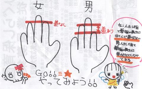 性別による指の長さの違い