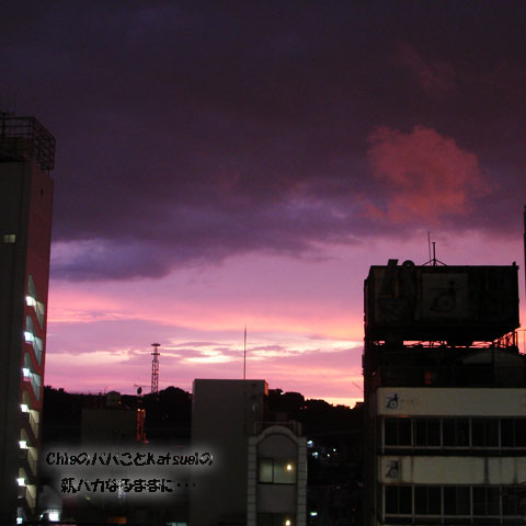 夕暮れの西の空2008年7月27日