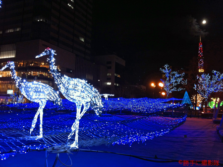 24-20111210d.jpg