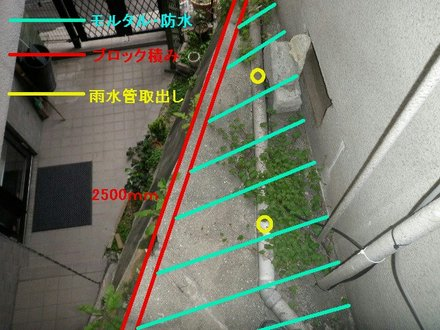P4070111.jpg