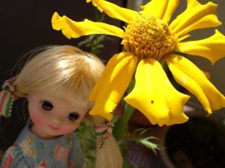 お花といっしょ(6)