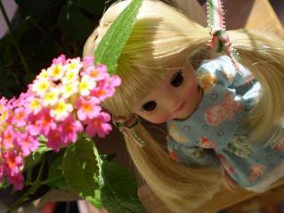 お花といっしょ(2)