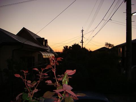 朝の光の中で