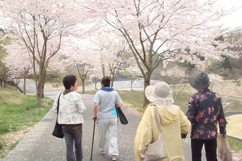 桜の下で・・・