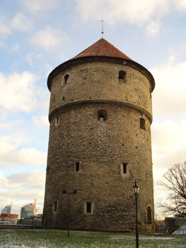 estonia-tower.jpg