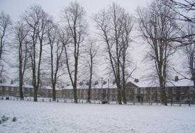 snow080207.jpg