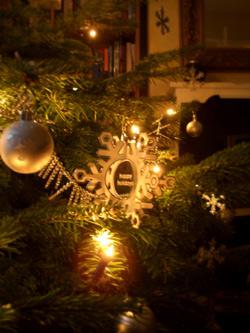 tree-_card.jpg