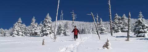 snowtouring