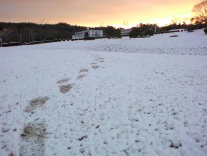 snowymorning021708