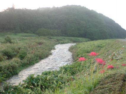 river_runs1