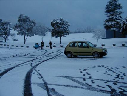 snowymorning5