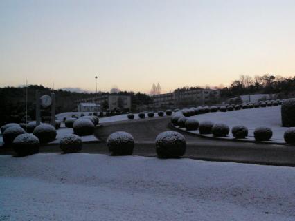 snowymorning3