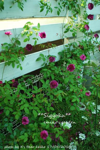 004_20100519223414.jpg