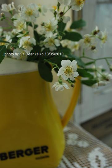 009_20100513143842.jpg