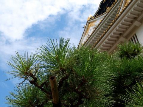 大阪城06