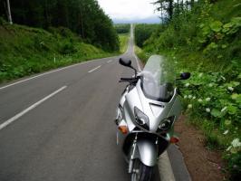 就実の丘への道1