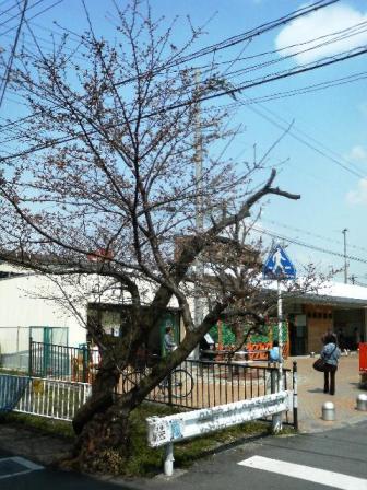 20080326ekimae3.jpg