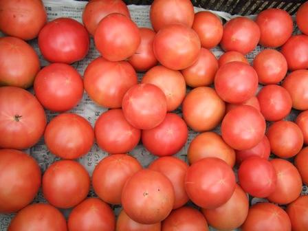 トマトアップ