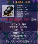 20060528104808.jpg