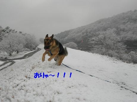 2010年02月18日_DSCN5912