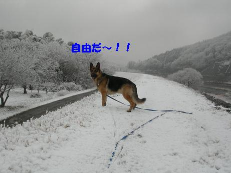 2010年02月18日_DSCN5916