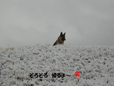 2010年02月18日_DSCN5929