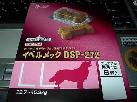 DSCN4553.jpg